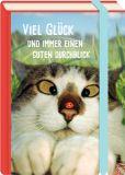 MT Viel Glück und immer einen guten Durchblick / Katze mit Marienkäfer - Fold & Zip - BK Edition Postkarte