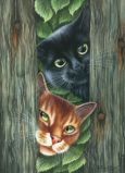 ACARDS Curious Guys / zwei Katzen hinter Zaun - Irina Garmashova Postkarte