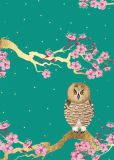 CITYPRODUCTS owl and cherry blossoms Flowerpower postcard