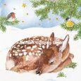 GOLLONG Reh im Schnee - Carola Pabst Postkarte
