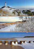 HARTUNG EDITION Winter am Meer / drei Bilder Postkarte