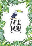 HARTUNG EDITION For you / Tukan NATURE Postkarte