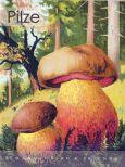 RANNENBERG Pilze Postkartenbuch