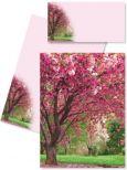 DFW Kirschblüte Briefmappe