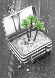 HARTUNG EDITION suitcase with palm trees KONTRASTE postcard