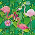 GOLLONG Drei Flamingos - Mila Marquis Postkarte