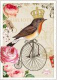TAUSENDSCHÖN Vogel auf Einrad Postkarte
