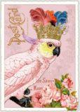 TAUSENDSCHÖN Kakadu mit Krone Postkarte