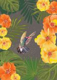 CITYPRODUCTS hummingbird with yellow blossoms Flowerpower postcard