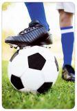 HARTUNG EDITION soccer MEDLEY postcard