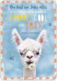 HARTUNG EDITION Happy Birthday / alpaca IN TOUCH postcard