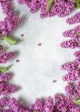 LYSCO violet lilacs A4 letter paper