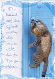 HARTUNG EDITION Glück die Tür öffnen - Katze IN TOUCH Postkarte