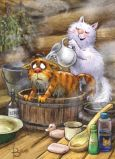 ACARDS Badezeit / Katze im Waschkübel - Irina Zeniuk Postkarte