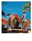 AQUAPURELLA Fischer, Martinique - Bon Voyage Postkarte + Umschlag