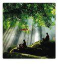 AQUAPURELLA Meditation, Thailand - Bon Voyage Postkarte + Umschlag
