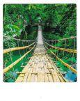 AQUAPURELLA Bambusbrücke, Thailand - Bon Voyage Postkarte + Umschlag