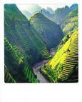 AQUAPURELLA Reisfelder auf Terrassen, Vietnam - Bon Voyage Postkarte + Umschlag