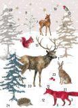 GRÄTZ Weihnachtswald - Daniela Drescher Adventskalender Doppelkarte