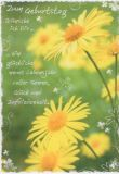HARTUNG EDITION Zum Geburtstag - gelbe Blumen IN TOUCH Postkarte