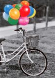 HARTUNG EDITION Bunte Ballons + Fahrrad Kontraste Postkarte