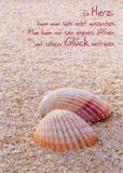 GWBI Herz + Glück - Muscheln im Sand - Lebenskunst Postkarte