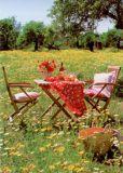 GWBI Picknick im Grünen - Impressionen Postkarte
