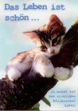 GWBI Das Leben ist schön... - Katze - Lebenskunst Postkarte