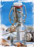 HARTUNG EDITION Flaschenpost Bügelflasche Postkarte