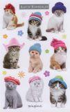 BSB Katzen mit Hut - Keith Kimberlin Sticker