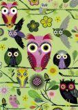 ROGER LA BORDE Elegant Owls green Glitzer Postkarte