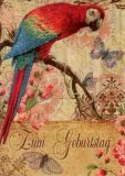 GOLLONG Zum Geburtstag - Papagei- Carola Pabst Postkarte