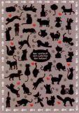 LALI Wer versteckt sich zwischen den Katzen? Postkarte