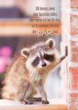 GWBI Ich komm harmlos rüber... - Bär - blickfänge Postkarte