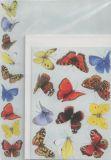 FLORIS Schmetterlinge Annie A5 Briefpapierset