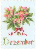 GOLLONG December / Blumenstrauß - Nina Chen Postkarte