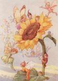 TAURUS-KUNSTKARTEN Sonnenblume mit Elfen Postkarte