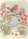 TAURUS-KUNSTKARTEN Rotkehlchen + Hagebutten Postkarte
