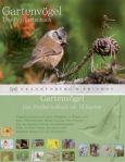 RANNENBERG Gartenvögel Postkartenbuch