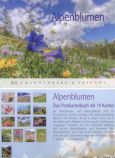 RANNENBERG Alpenblumen Postkartenbuch