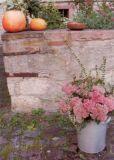 Schneckenpost Herbststrauß Postkarte