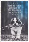 GRUSS & CO Freunde sind Menschen, die Dich unter Schirm holen Postkarte