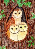 OWL ART SURI Schleiereulen Postkarte