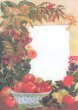 MenucarD Äpfel Briefpapier A4