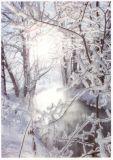 RANNENBERG Winterlicher Fluss Postkarte