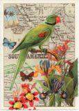 TAUSENDSCHÖN Alexandersittich mit Blüten Postkarte
