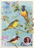 TAUSENDSCHÖN Drei Vögel auf Beerenzweigen Postkarte