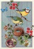 TAUSENDSCHÖN Blaumeisen mit Nest Postkarte