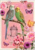 TAUSENDSCHÖN Wellensittiche Postkarte