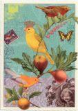 TAUSENDSCHÖN Ziegensittich mit Krone + Früchten Postkarte